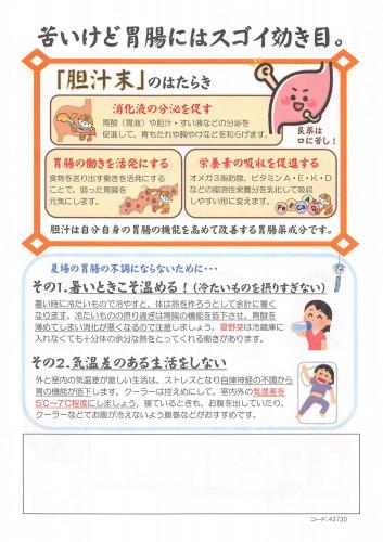 夏場の胃腸チラシ_02